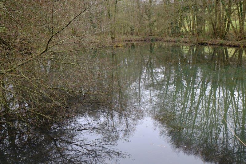 Past Jones' pond