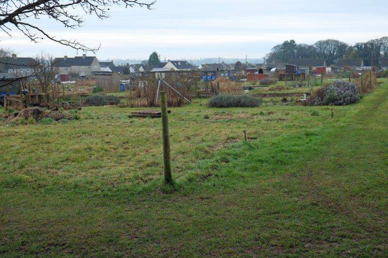 Up past the allotments