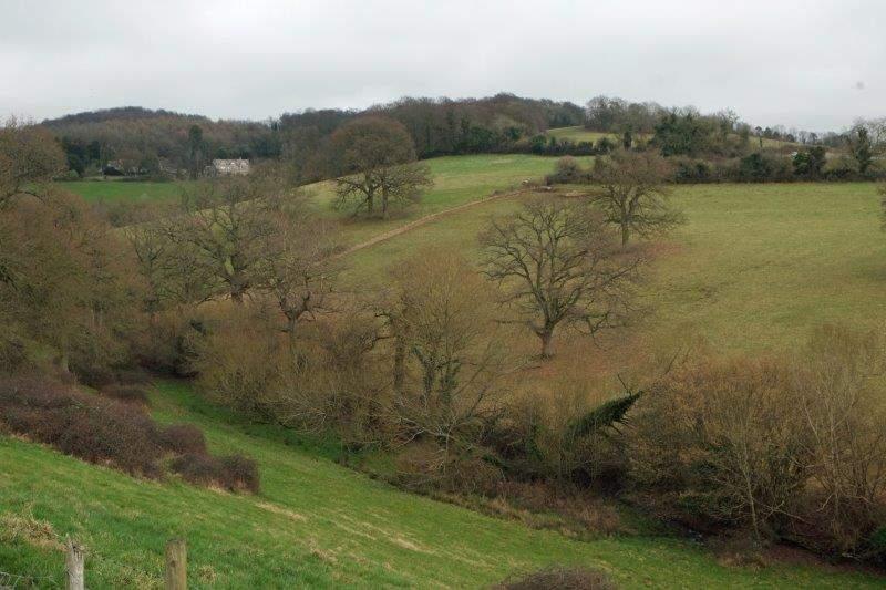 We look down over Badbrook Valley