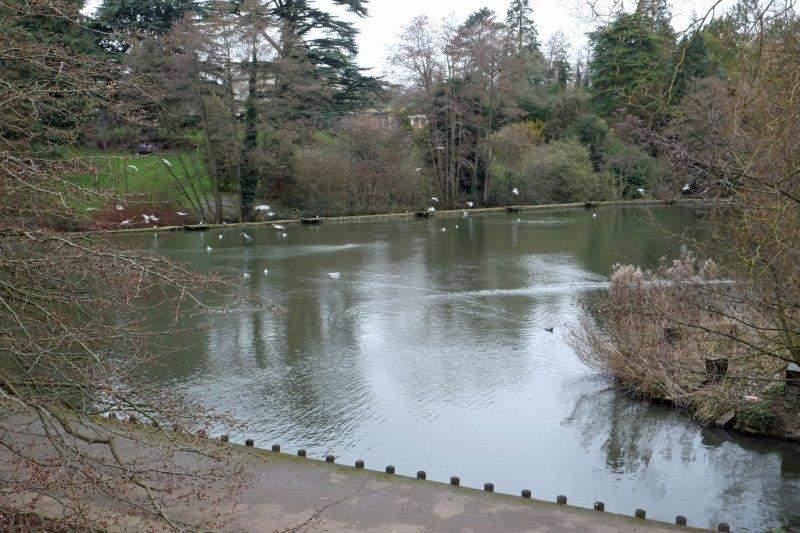 Soon reaching the lake at Stratford Park