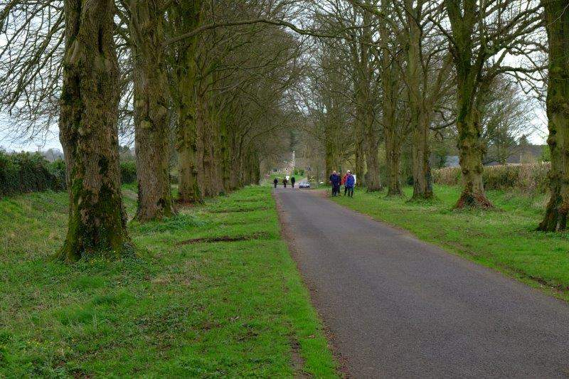 Then we head along the avenue of trees back to the cars