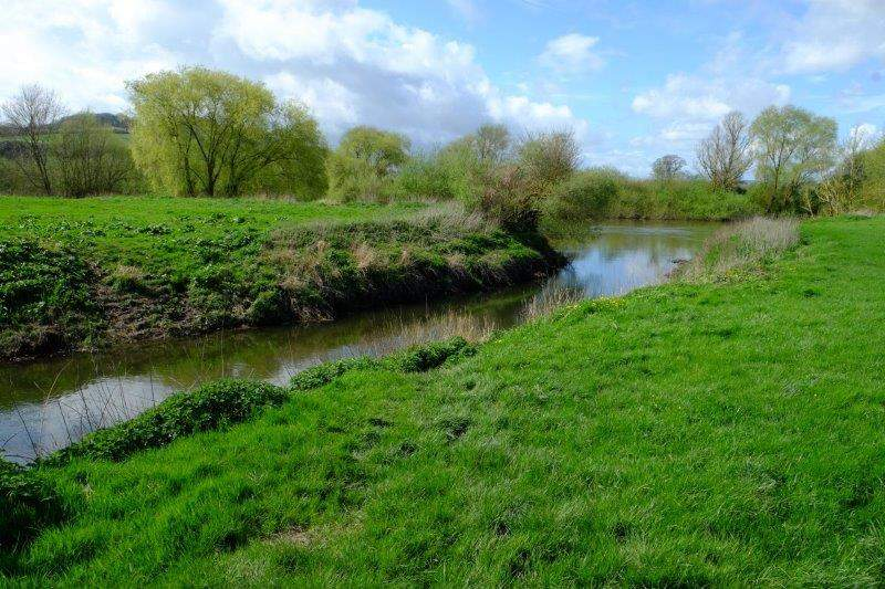 Where the Chelt meets the Severn