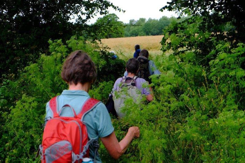 Then we head off through some dense undergrowth