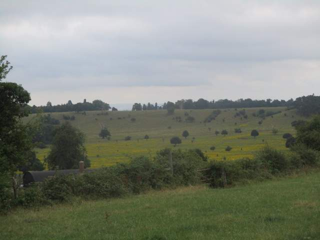 And reach our lunch spot with views over to the Deer Park