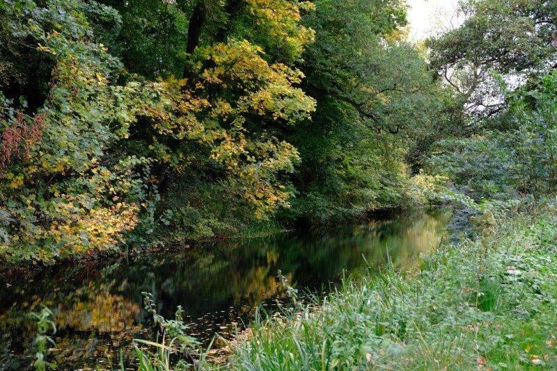 Plenty of Autumn colours