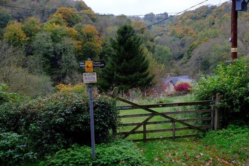 Down into Toadsmoor