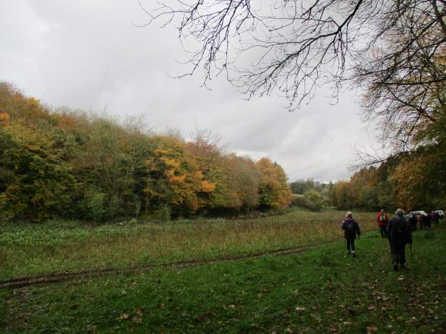 Then past some colourful trees with a shooting party ahead