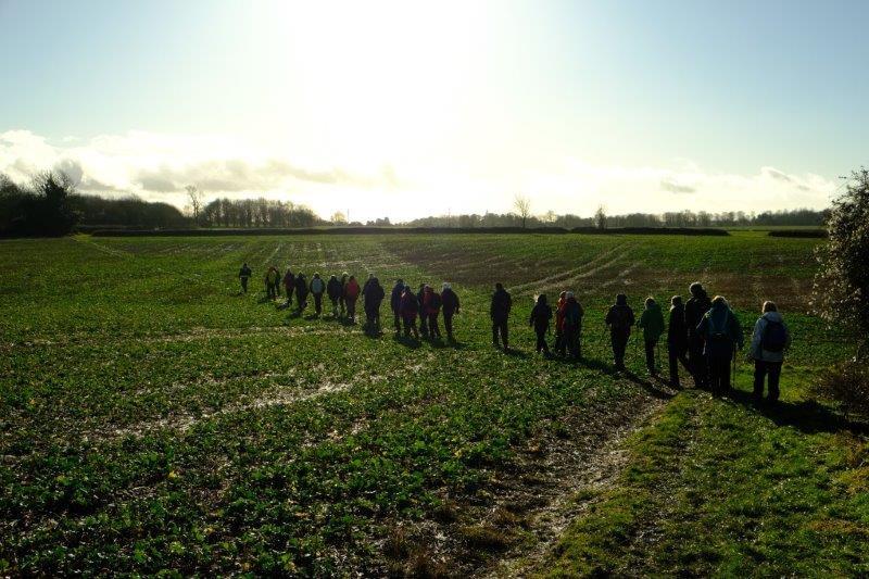 Over muddy fields