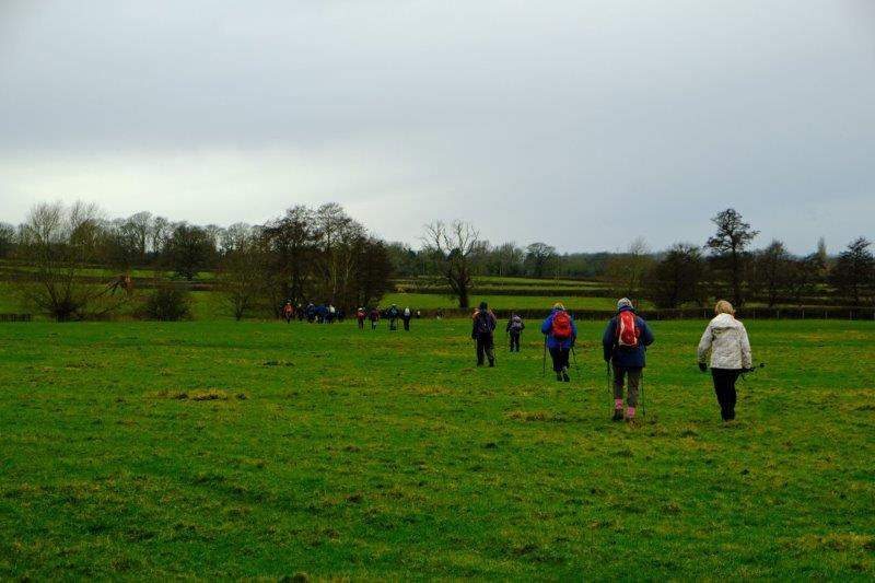 More soggy fields