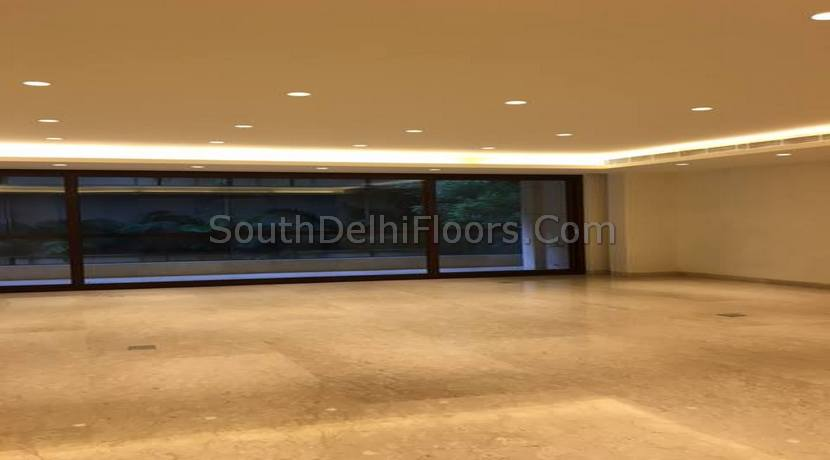 Vasant Vihar New Delhi (4)