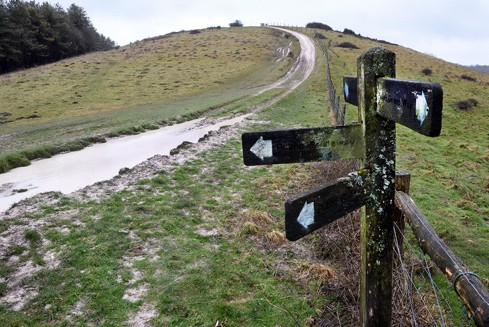 Footpath in the South Downs