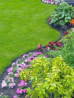 landscaping Beaumont, landscaper Beaumont, landscaping company Southeast Texas, SETX landscaping, irrigation company Beaumont TX