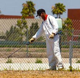 Pest Control SETX - commercial pest control Southeast Texas