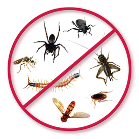 Pest Control SETX - industrial pest control Beaumont area