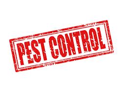 Pest Control in Bridge City TX