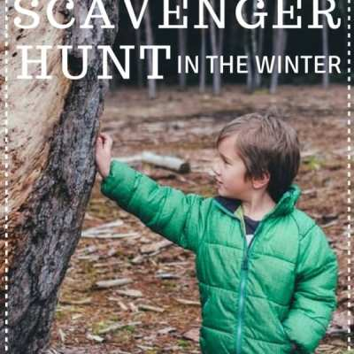A Fun Wildlife Scavenger Hunt in the Winter #DontHibernate