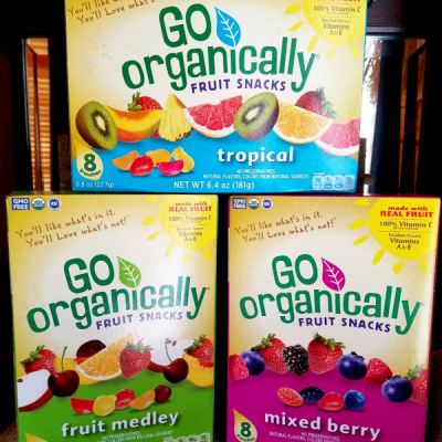 The Perfect Snack: Go Organically Fruit Snacks