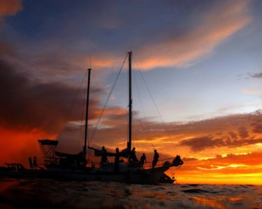 sailing fremantle