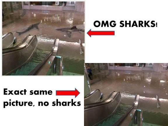 This building really flooded, but there are not sharks in it.