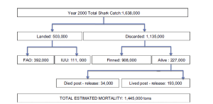 "Figure 2 from Worm et al. 2013. ""Estimating global shark mortality for the year 2000. Included are reported (from FAO) and illegal, unreported, and unregulated (IUU) landings as well as shark discards. Total mortality was calculated as the total catch minus the number of sharks which survived discarding. All figures were rounded to nearest 1000 metric tons"""