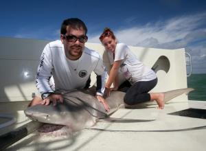 WhySharksMatter and an RJD intern with an adult female lemon shark