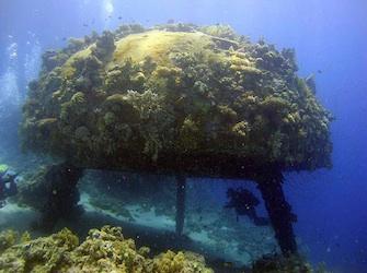 Conshelf 2. Cousteau Society.