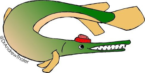 A gar wearing a red cap.