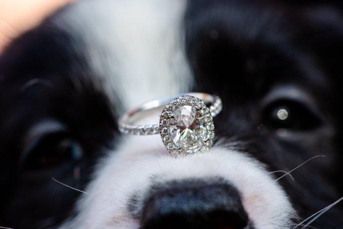 Boho chic dog wedding ring