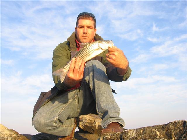 Maryland fishing report southern maryland fishing for Solomons island fishing report