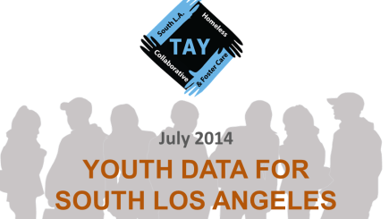 Data Summary on South LA TAY Compiled July 2014