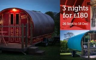 Best bargain ever for Dorset glampers! 3 nights for £180
