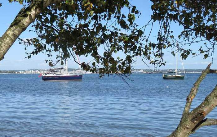 A Busman's holiday. At Shipstal Point (Arne) view of Poole harbour © Colin Church