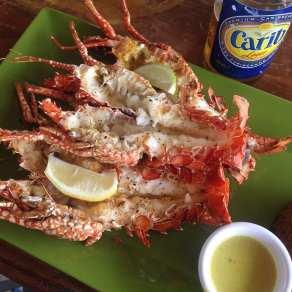 Sandy Island Lunch
