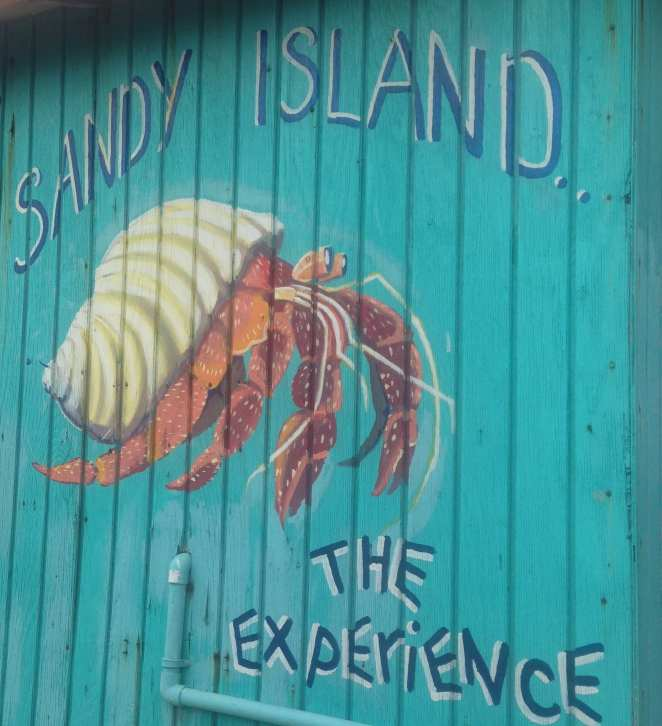 Sandy Island_1