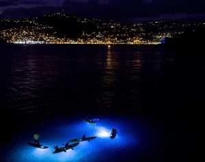 nighttime-kayaking-2