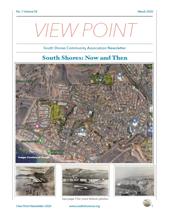 First page of 2020 View Point newsletter