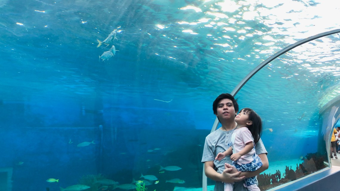 Cebu Ocean Park 360-Degree tunnels
