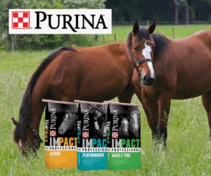 Purina Horse Feed | Southside Feed & Supply