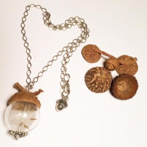 EarthNerd acorn art