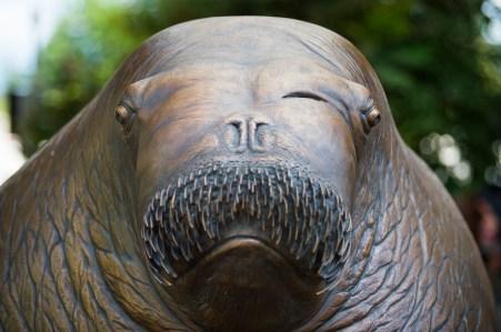 Point Defiance Zoo and Aquarium ET