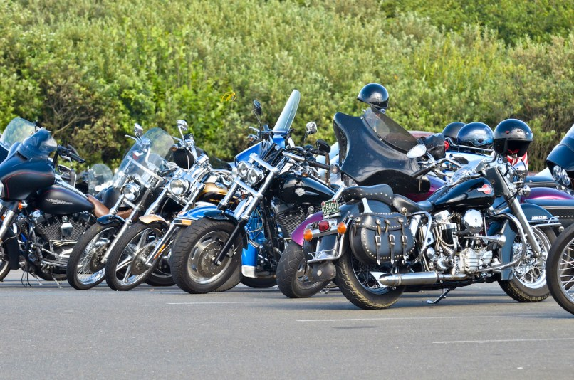 Hog Wild Coastal Motorcycle Rally