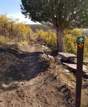 Imagine if there were trail options right out your door!  LivePCGivePC on November 4, 2016