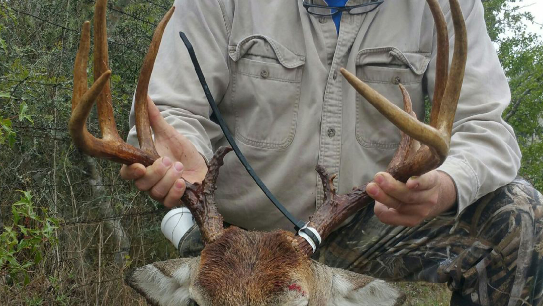 Whitetail-STXHO-28