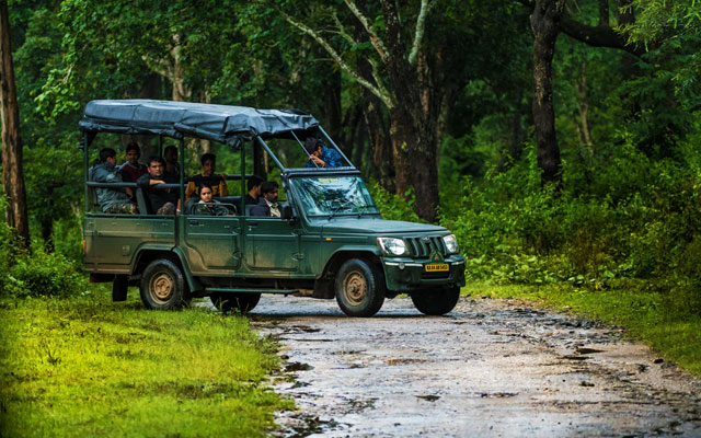 Karnataka forest department safari vehicle with tourist going through the forest in Kabini Wildlife Sanctuary, Karnataka, India.