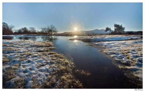 Frost in Gwent. Photo by Edyta Putresza