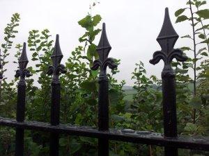brecon-village-railings-4