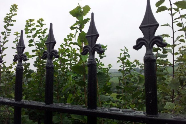railings fence brecon