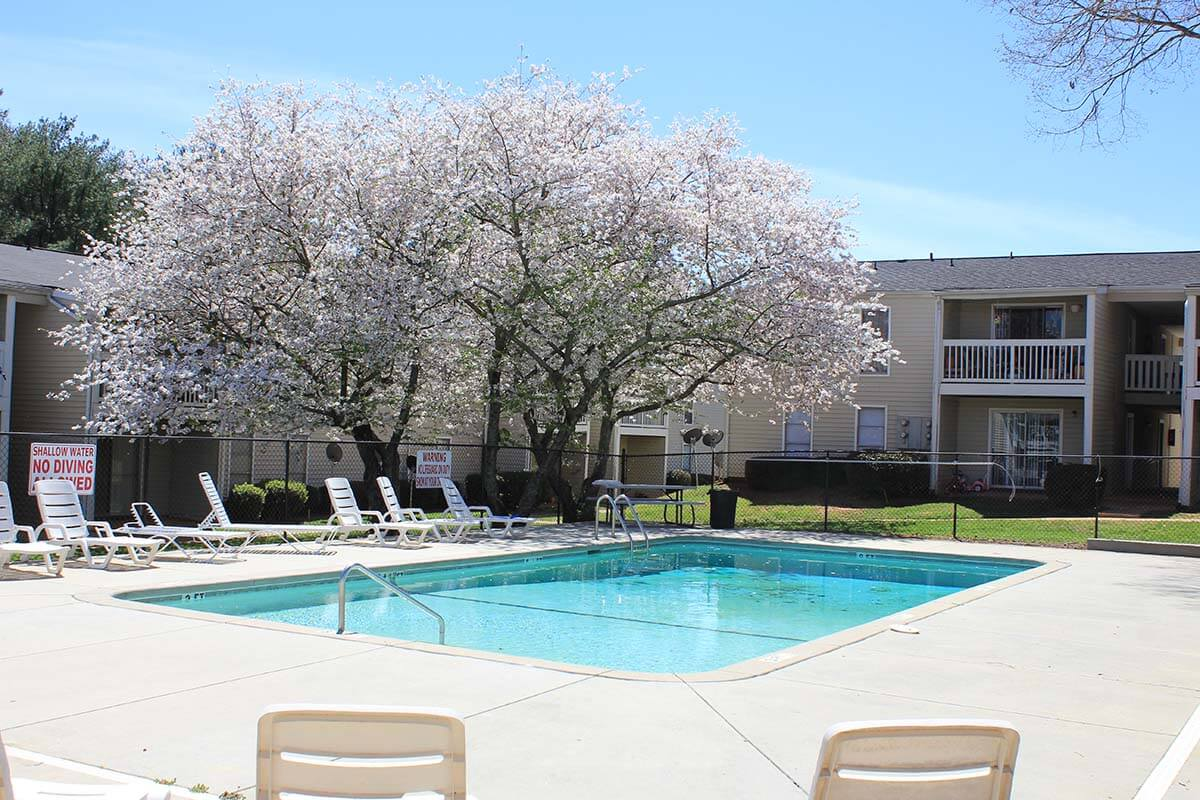 Pet Friendly Apartments In Greenville Nc