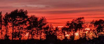 Sunset Over Southwoods