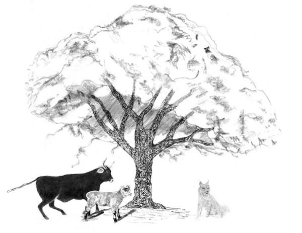 treewithbull_sheep_lynx